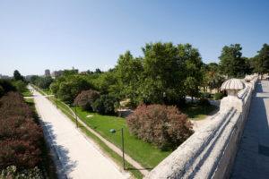 Jardines del Turia desde uno de los puentes